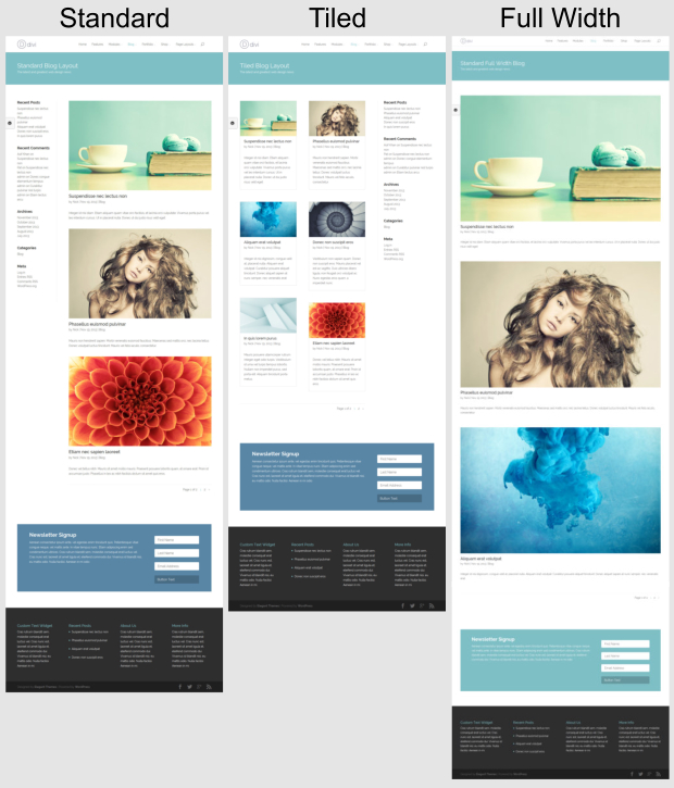 Divi wordpress theme review wp themes advisor 2017 - Divi builder woocommerce product page ...